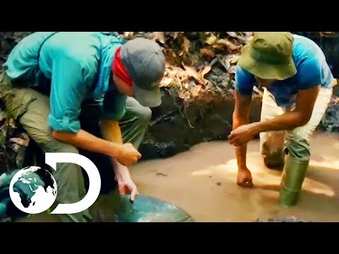 Parker Learns How To Prospect For Gold Guyana Style | Gold Rush: Parker's Trail