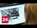 """Первые штрафы за нарушения на """"зебре"""": камеры на переходах прошли тест"""