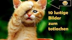10 lustige Bilder!!!