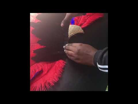 Diy samba/carnival feathered headpiece