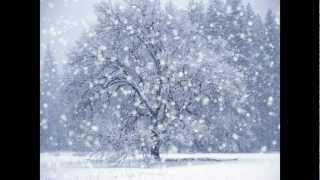 Lucian Ştefan - Permanenta iarnă (cantece de munte)