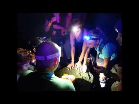 Costa Rica Study Abroad - Lonestar College Cy-Fair