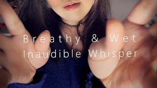 ASMR Moving Real Inaudible Whisper with Hand Movements 멀리서 가까이 속삭임