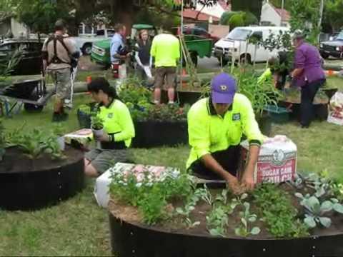 Guerrilla Gardeners in action