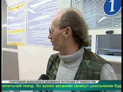 Автовокзал в ТК Синегорье возобновил работу