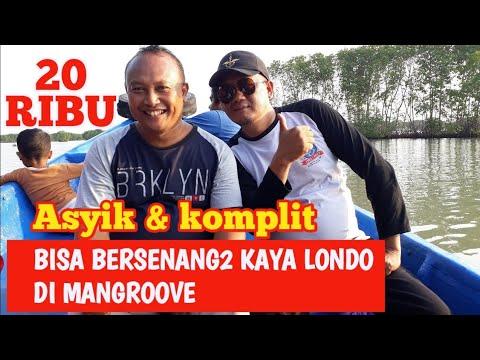 wisata-alam-hutan-mangrove-brebes