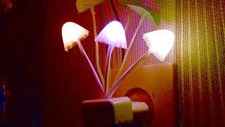 Ночник который Вы захотите купить. Светильник - ночник LED RGB(Такой ночник Вам обязательно понравится. Куплено здесь ..., 2016-01-14T18:54:26.000Z)