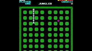 Arcade Game: Jungler (1981 Konami)