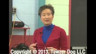 Solving Fear & Aggression: Help Your Dog Achieve It's Potential - Sophia Yin