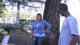 Cali K9® - A Day In The Dog Training Life: Episode 1 - San Jose Dog Training