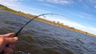 От таких поклёвок СЕРДЦЕ УХОДИТ В ПЯТКИ Ловля щуки осенью Рыбалка на спиннинг 2021
