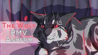 ◁ WARRIORS ▷ Ashfur | The Wolf | PMV