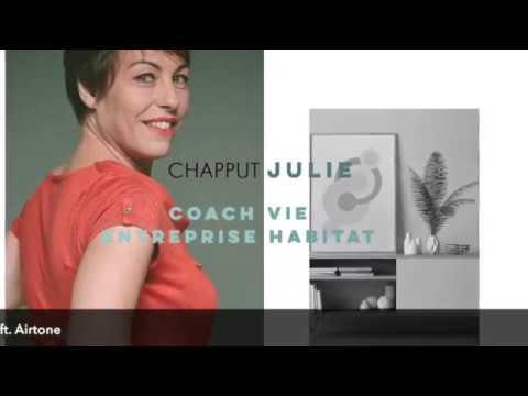 Julie Chapput présente le Coaching SANE