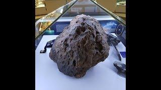 челябинский Краеведческий Музей, метеорит и шерстистый носорог, обзор тревел блогера Рантье