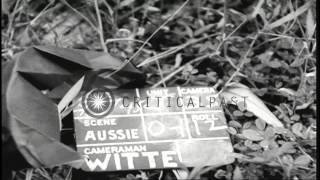 Australian soldiers fire at water works buildings on Tarkan island in Borneo, Ind...HD Stock Footage