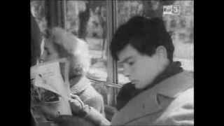 Amici per la pelle (1955)