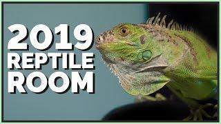 2019-reptile-room-tour