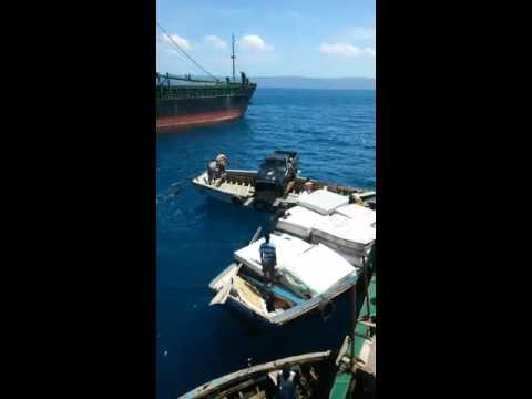 Unloading cars haiti
