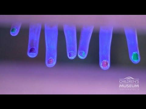 Weird Science Handwashing | Children
