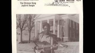 The Chicken Dance - Waynell Jones