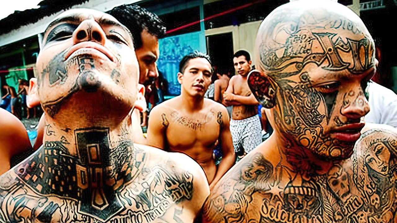 Download The Most DANGEROUS GANGS In The World