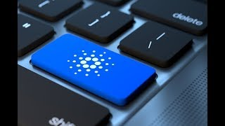 Cardano - Top 50 Crypto Valley Project; #3 'World's Biggest Protocol Project'