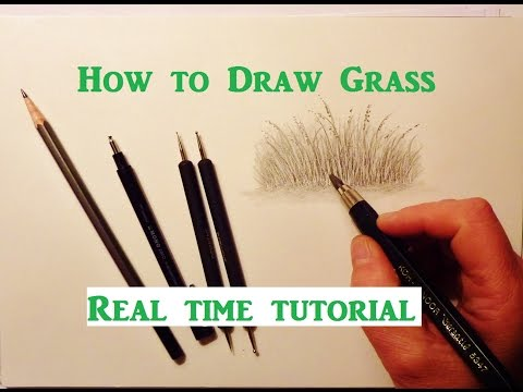 How To Draw Grass, Pencil Drawing Tutorial, Graphite Pencil Drawing Tips