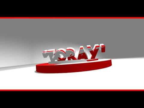 Intro TORAY