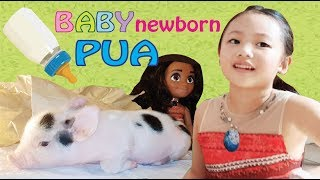 🐷 Moana Bug Pretend Play with Newborn PUA 🐽