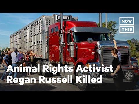Animal Rights Activist Regan Russell Killed at Pig Vigil | NowThis