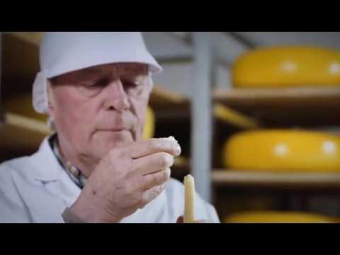 Maaz - Dairy Foods - High Yield Milk Powder