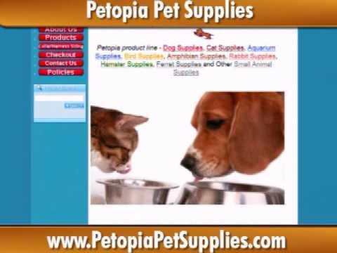 Petopia pet store / St augustine courses