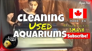 Cleaning Used Aquariums Easily | How to Clean a Second Hand Fish Tank