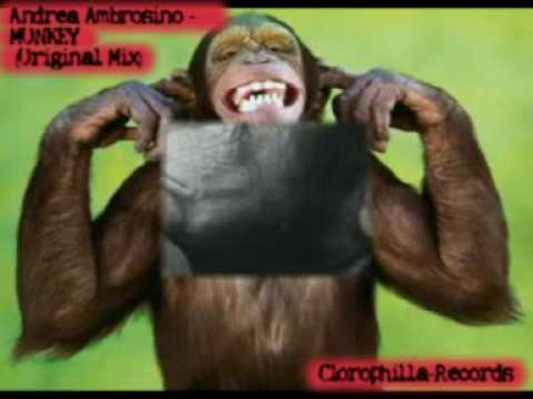 Andrea Ambrosino Monkey Original Mix Best House