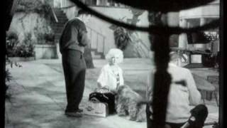 marilyn and the dog in the movie  someting' s got to give 1962 Thumbnail
