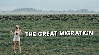 Is the GREAT MIGRATION Disappearing? || What's happening in East Africa?