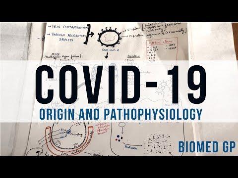 COVID-19 | SARS-CoV-2 Origin and Pathophysiology | BioMed GP