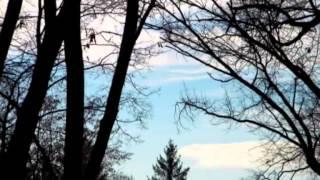 Король и Шут-Воспоминания о былой любви (fan-video)