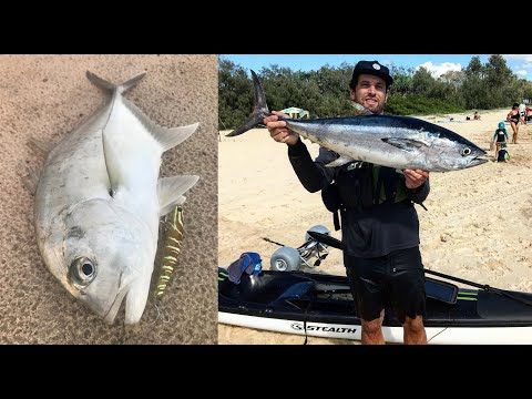 Noosa River GT On Surface (sugar Pen) & Halls Reef Longtail