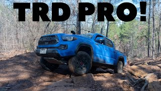 A More Reliable ZR2?---2019 Toyota Tacoma TRD PRO Review