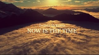 We Can Make A Difference - Terence McKenna Environmental Speech