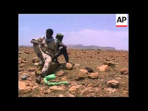 ERITREA: TWO ETHIOPIAN AIR FORCE JETS SHOT DOWN: UPDATE