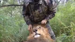 FOUR PAWS reveals: The bloody business of cannedhunting.com