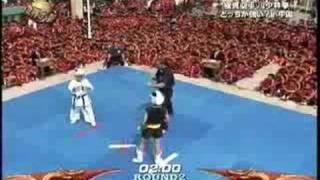 kyokushin vs kung fu