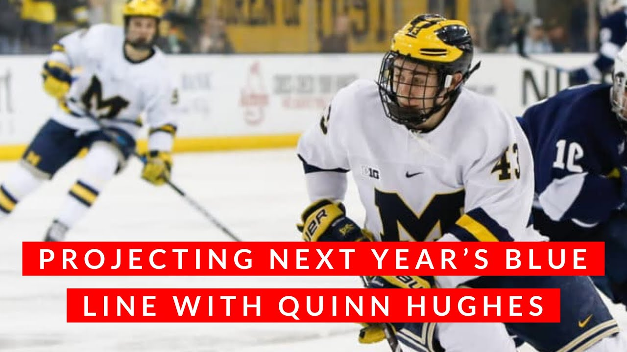new style 9070a bed14 Vancouver Canucks: projecting next year's blue line (Quinn Hughes and a  free agent signing)