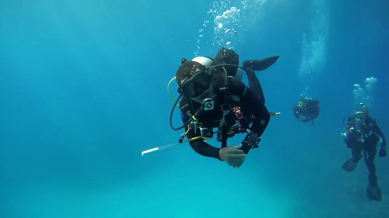 The Horizon TriangleBlue Bermuda Scuba Diving yfgbY67v