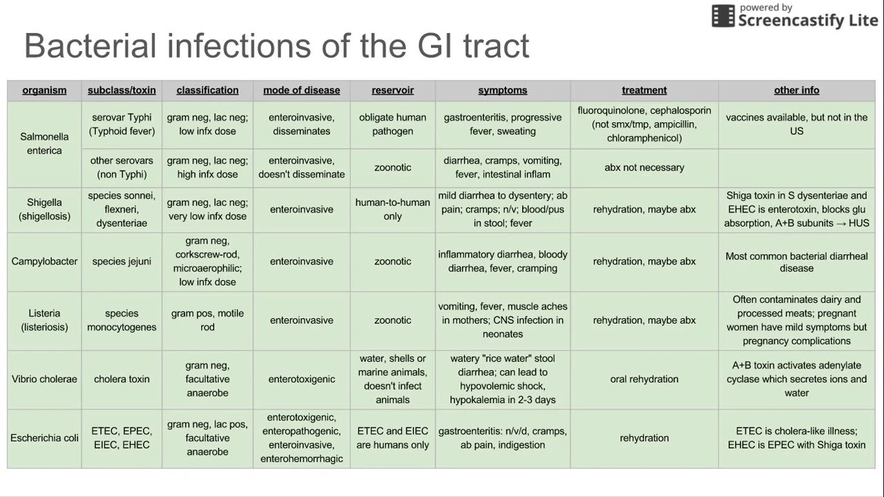 Bacterial Infections Of The Gi Tract Youtube
