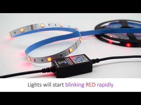 Echo Kit LED Light Strips Installation Guide - HitLights