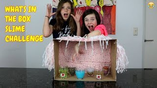 WHAT'S IN THE BOX SLIME CHALLENGE met BFF MICHELLE - Bibi