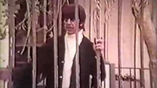 Mark Lindsay - Miss America (tv clip)